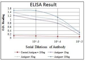 ELISA - Anti-HIF-1-alpha [1A3] antibody (ab113642)
