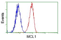 Flow Cytometry - Anti-MCL1 antibody [2E11] (ab114026)