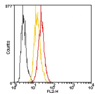 Flow Cytometry - Anti-Hsp25 antibody (Phycoerythrin) (ab115897)