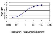 Sandwich ELISA - Anti-NeuroD1 antibody [3H8] (ab117562)