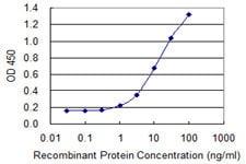 Sandwich ELISA - Anti-TECTA antibody [2A5] (ab118086)