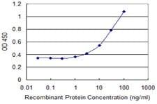 Sandwich ELISA - Anti-Olfactory receptor 2A2 antibody (ab118132)
