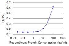 Sandwich ELISA - Anti-FBXW4P1 antibody [2C5] (ab118292)
