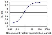 Sandwich ELISA - Anti-NDUFA8 antibody (ab118319)