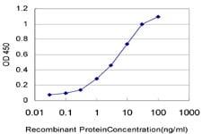 Sandwich ELISA - Anti-hnRNP M3-M4 antibody [3F7] (ab118850)