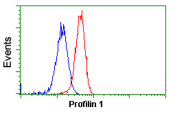 Flow Cytometry - Anti-Profilin 1 antibody [1D5] (ab118984)
