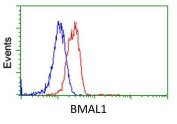 Flow Cytometry - Anti-BMAL1 antibody [3G9] (ab119009)