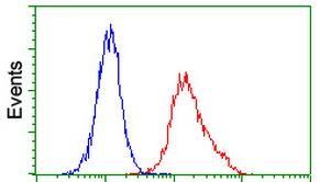 Flow Cytometry - Anti-ITM2B antibody [1C11] (ab119044)
