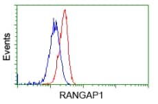 Flow Cytometry - Anti-RanGAP1 antibody [1B4] (ab119092)