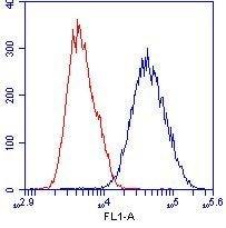 - Anti-SLIRP antibody [1E10BC8] (ab119687)