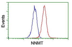 Flow Cytometry - Anti-NNMT antibody [3D8] (ab119758)