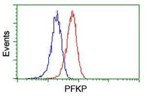 Flow Cytometry - Anti-PFKP antibody [1D6] (ab119796)