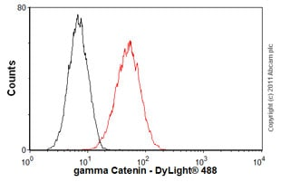 Flow Cytometry-Anti-gamma Catenin antibody [15F11](ab12083)