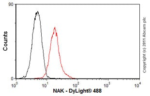 Flow Cytometry - Anti-NAK antibody [108A429] (ab12116)