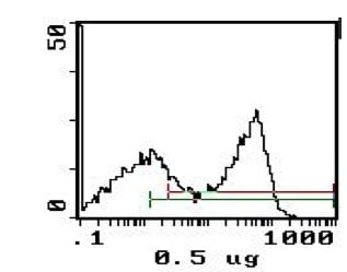 Flow Cytometry - Anti-RT1-B antibody [MRC OX-6] (Phycoerythrin) (ab123108)