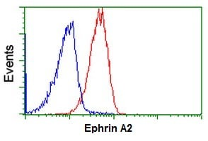 Flow Cytometry - Anti-Ephrin A2 antibody [3E3] (ab123877)