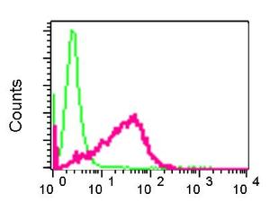 Flow Cytometry - Anti-XRCC2 antibody [EPR5149] (ab124900)