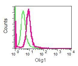 Flow Cytometry - Anti-Olig1 antibody [EPR6790] (ab124908)