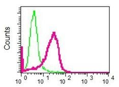 Flow Cytometry - Anti-KAT7 / Hbo1 / MYST2 antibody [EPR7194(B)] (ab124993)