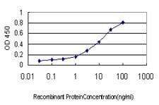Sandwich ELISA - Anti-PGRMC2 antibody [3C11] (ab125122)