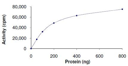 Functional Studies - PDK4 protein (Active) (ab125560)