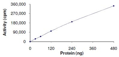 Functional Studies - MLK2 protein (Active) (ab125562)