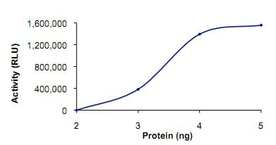 Functional Studies - PDE1C protein (Active) (ab125567)