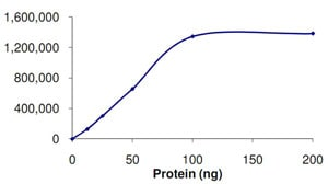 Functional Studies - PIK3C2G protein (Active) (ab125595)