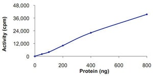 Functional Studies - GRK7 protein (Active) (ab125599)