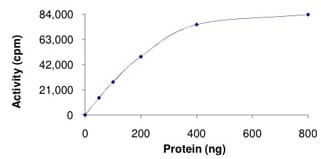 Functional Studies - Tau tubulin kinase 2 protein (ab125631)