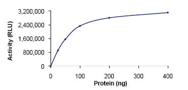 Functional Studies - SPHK1 protein (Active) (ab125662)