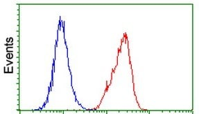 Flow Cytometry - Anti-p53 antibody [3D5] (ab125709)