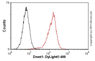 Flow Cytometry-Dnmt1 antibody [60B1220.1] - ChIP Grade(ab13537)