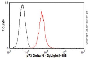 Flow Cytometry-Anti-p73 Delta N antibody [38C674] - ChIP Grade(ab13649)