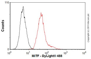 Flow Cytometry - Anti-MiTF antibody [21D1418] (ab13703)