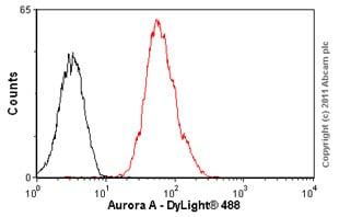 Flow Cytometry - Anti-Aurora A antibody [35C1] (ab13824)