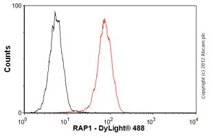 Flow Cytometry - Anti-RAP1 antibody [4c8/1] - Telomere Marker (ab14404)