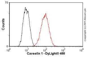 Flow Cytometry - Anti-Caveolin-1 [7C8] antibody (ab17052)