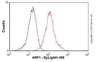Flow Cytometry-Anti-ARF1 antibody [ARFS 1A9/5](ab18108)