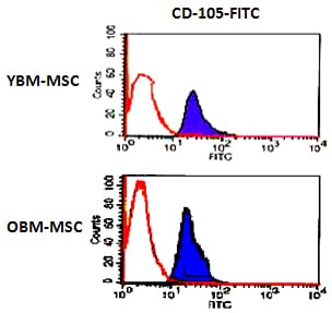 Flow Cytometry - Anti-CD105 antibody [MEM-226] (FITC) (ab18278)