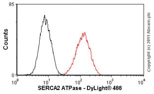 Flow Cytometry - SERCA2 ATPase antibody [2A7-A1] (ab2861)