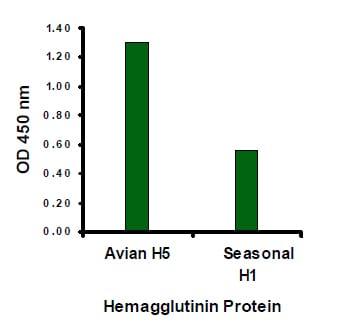 ELISA - Avian Influenza A Hemagglutinin antibody (ab21297)