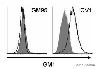 Flow Cytometry - Ganglioside GM1 antibody (ab23943)