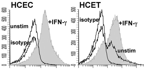 Flow Cytometry - Anti-MD2 antibody (ab24182)