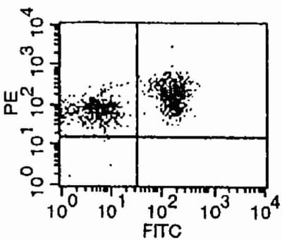 Flow Cytometry - ICAM2 antibody [3C4] (Phycoerythrin) (ab25524)