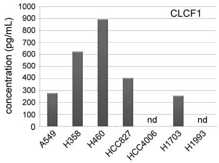 Sandwich ELISA - Anti-NNT1 antibody (ab26125)