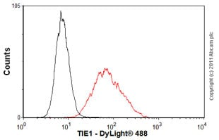 Flow Cytometry-Anti-TIE1 antibody [Cl. 8C9](ab27851)