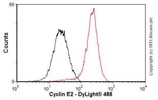 Flow Cytometry-Anti-Cyclin E2 antibody [E142](ab32103)