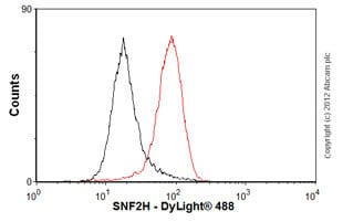 Flow Cytometry-Anti-SNF2H antibody [3.25(2)](ab33747)