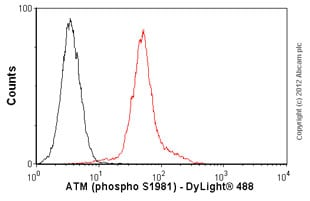 Flow Cytometry-Anti-ATM (phospho S1981) antibody [10H11.E12](ab36810)